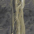 Mother Canada I Poster by Wayne Bonney