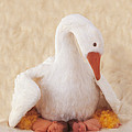Mother Goose Poster by Anne Geddes