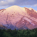 Mount Rainier At Sunrise Mount Rainier Poster by Tim Fitzharris