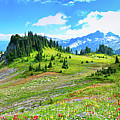 Mount Rainier Summer Colors Poster by Feng Wei Photography