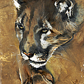 Mountain Lion - Guardian of the North Print by J W Baker