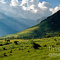 Mountain Rays Print by Evgeni Dinev