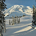 Mountainous Landscape In Mt. Rainer Print by Raymond Gehman