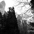 Mountains of Yosemite . 7D6213 . Black and White Poster by Wingsdomain Art and Photography