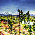Mt Hood Winery Poster by Vicki Jauron