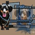 My Doxie Has Moxie - Dachshund Poster by Renae Laughner