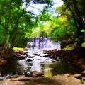 My Waterfall Print by Bill Cannon