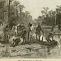 Natives Of Many Southeastern Tribes Poster by Everett