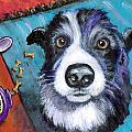 Naughty Border Collie Poster by Dottie Dracos