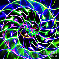 Nautilus Shell Ying and Yang - Electric - v2 - Blue-Green Print by Wingsdomain Art and Photography