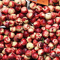 Nectarines - 5D17905 Poster by Wingsdomain Art and Photography