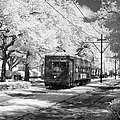NEW ORLEANS: STREETCAR Print by Granger