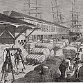 North Commercial Wharf Of Charleston Print by Everett