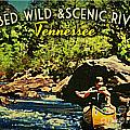 Obed Wild Scenic River Tennessee  Poster by Flo Karp
