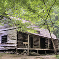 Ogle Homestead - Smoky Mountain rustic cabin Print by Thomas Schoeller