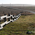 Old Fence And Landscape Along Sir Francis Drake Boulevard At Point Reyes California . 7D9897 Print by Wingsdomain Art and Photography