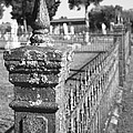 Old Graveyard Fence in Black and White Print by Kathy Clark