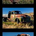 Old Guys Trio 4 Poster by Idaho Scenic Images Linda Lantzy