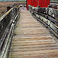 Old Red Shack At The End of The Walkway Poster by Wingsdomain Art and Photography