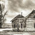 Old Rustic Log House in the Snow Print by Dustin K Ryan