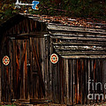 Old Shed Oakhurst by Marjorie Imbeau