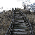 Old Wooden Stairs Leading up to Top of a Sand Dune Print by Christopher Purcell