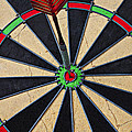 On Target Bullseye Print by Garry Gay