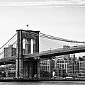 On the Brooklyn Side Print by Bill Cannon