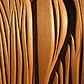 Organic Mahogany Shapes Print by Charles Dancik