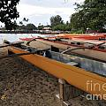 Outrigger Canoes Print by Andy Smy