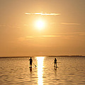 Paddle Boarding Out of the Sunset Poster by Bill Cannon