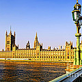 Palace of Westminster from bridge Poster by Elena Elisseeva