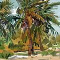 Palms in Key West Print by Donald Maier