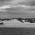 Panoramic of Lossiemouth beach on west coast of Scotland Poster by Zoe Ferrie