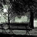park benches in autumn Poster by Joana Kruse