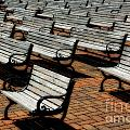 Park Benches Poster by Perry Webster