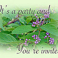 Party Invitation - General - American Beautyberry Shrub Print by Mother Nature