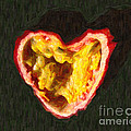 Passion Fruit Print by Wingsdomain Art and Photography