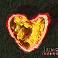 Passion Fruit With Text Poster by Wingsdomain Art and Photography
