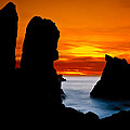 Patrick's Point Silhouette Print by Greg Nyquist