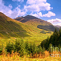 Peaceful Sunny Day in Mountains. Rest and Be Thankful. Scotland Poster by Jenny Rainbow