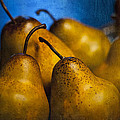 Pears Waiting Poster by Scott Norris