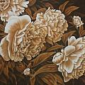 Peonies in Sepia Poster by Karen Coombes