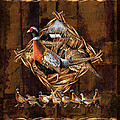 Pheasant Lodge Poster by JQ Licensing