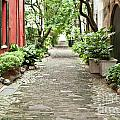 Philadelphia Alley Charleston Pathway Print by Dustin K Ryan
