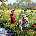 Picking Yellow Flowers Poster by Roelof Rossouw