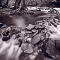 Pigeon Forge River Great Smoky Mountains BW Poster by Steve Gadomski