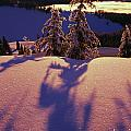 Pink And Purple Sunrise Shadows Of Snow Poster by Natural Selection Craig Tuttle