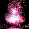 Pink Fireworks At NYC Print by Archana Doddi