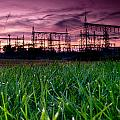 Power Lines Sunset Print by Cale Best